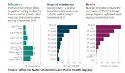 Covid Hospital Age.jpg